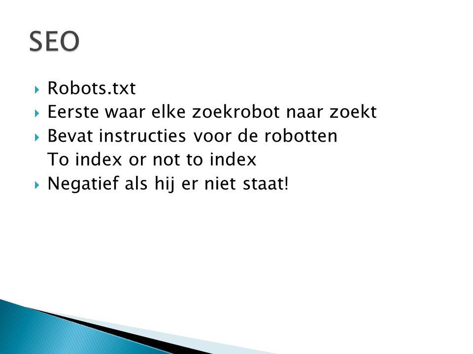 SEO Robots.txt Eerste waar elke zoekrobot naar zoekt
