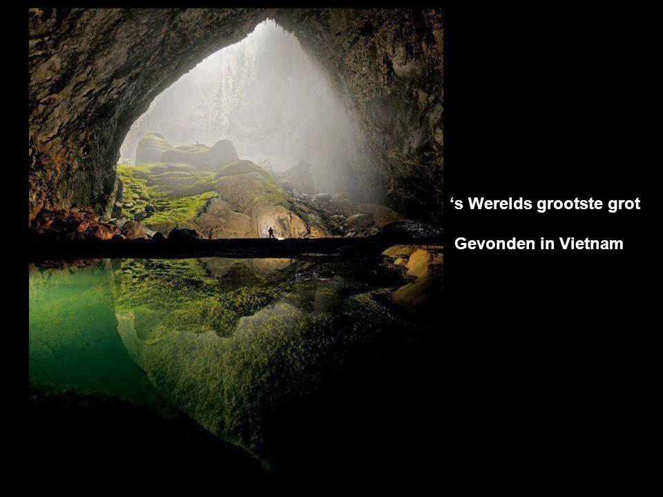 's Werelds grootste grot