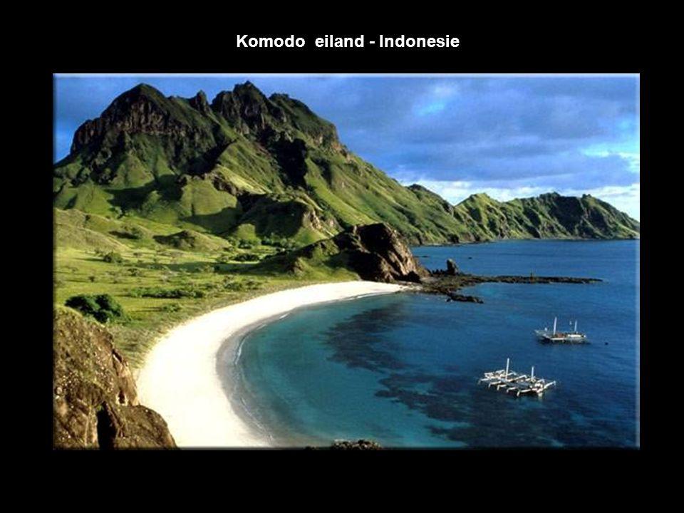Komodo eiland - Indonesie