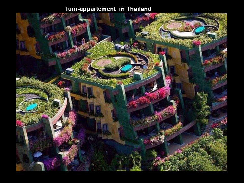 Tuin-appartement in Thailand