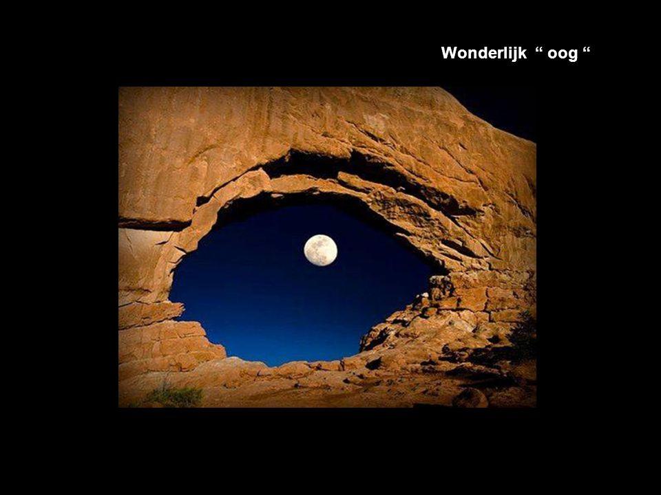 Wonderlijk oog