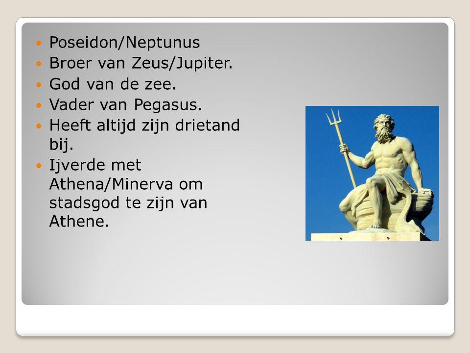 Poseidon/Neptunus Broer van Zeus/Jupiter. God van de zee. Vader van Pegasus. Heeft altijd zijn drietand bij.