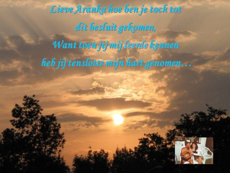 Lieve Aranka hoe ben je toch tot dit besluit gekomen,
