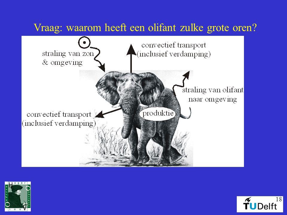 Vraag: waarom heeft een olifant zulke grote oren