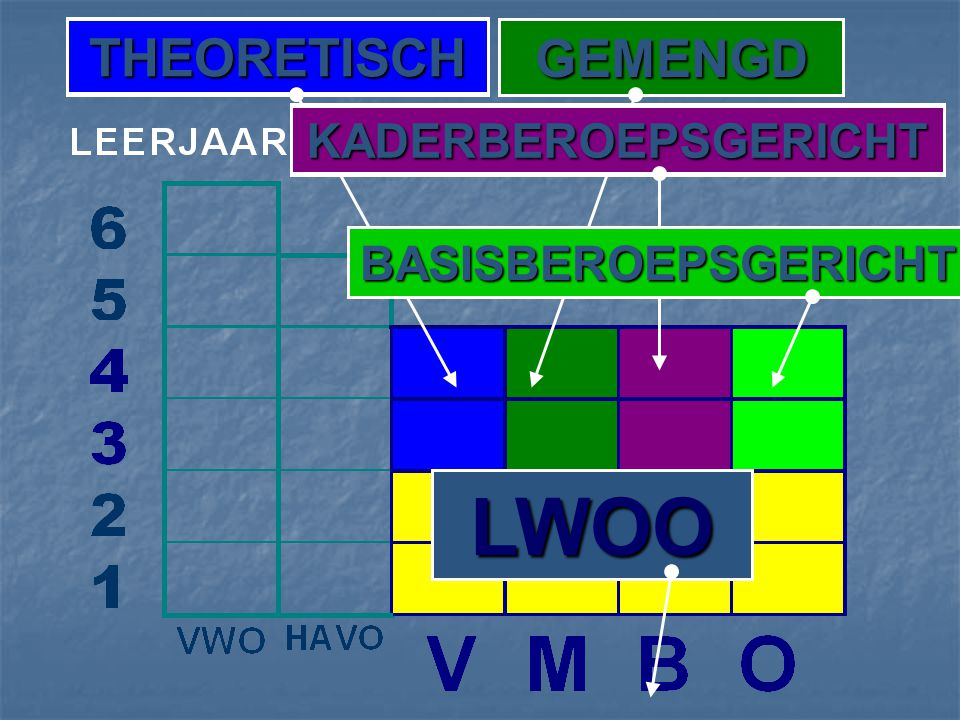 THEORETISCH GEMENGD KADERBEROEPSGERICHT BASISBEROEPSGERICHT LWOO