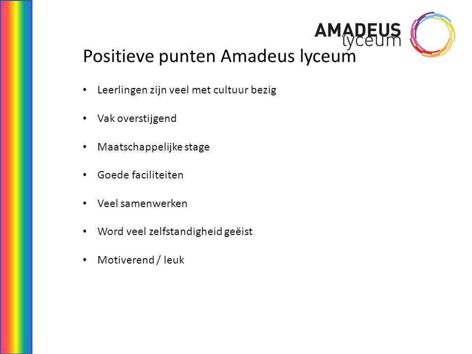 Positieve punten Amadeus lyceum