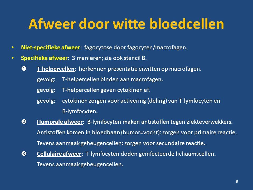 Afweer door witte bloedcellen