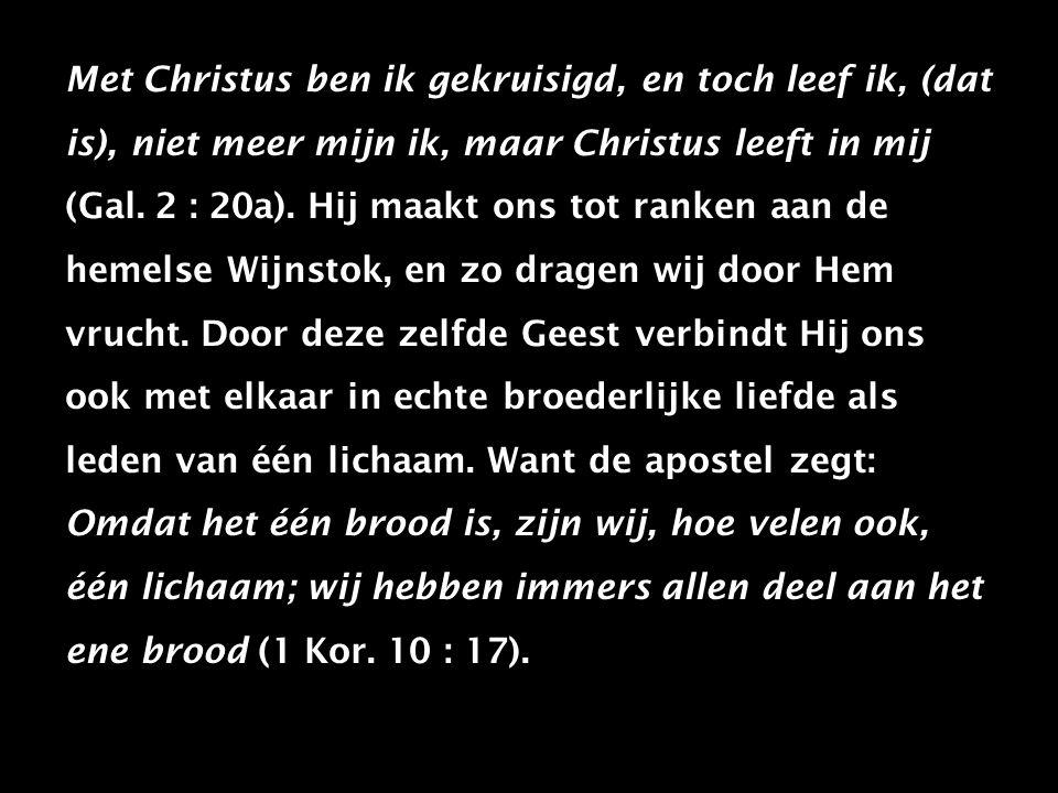 Met Christus ben ik gekruisigd, en toch leef ik, (dat is), niet meer mijn ik, maar Christus leeft in mij (Gal.