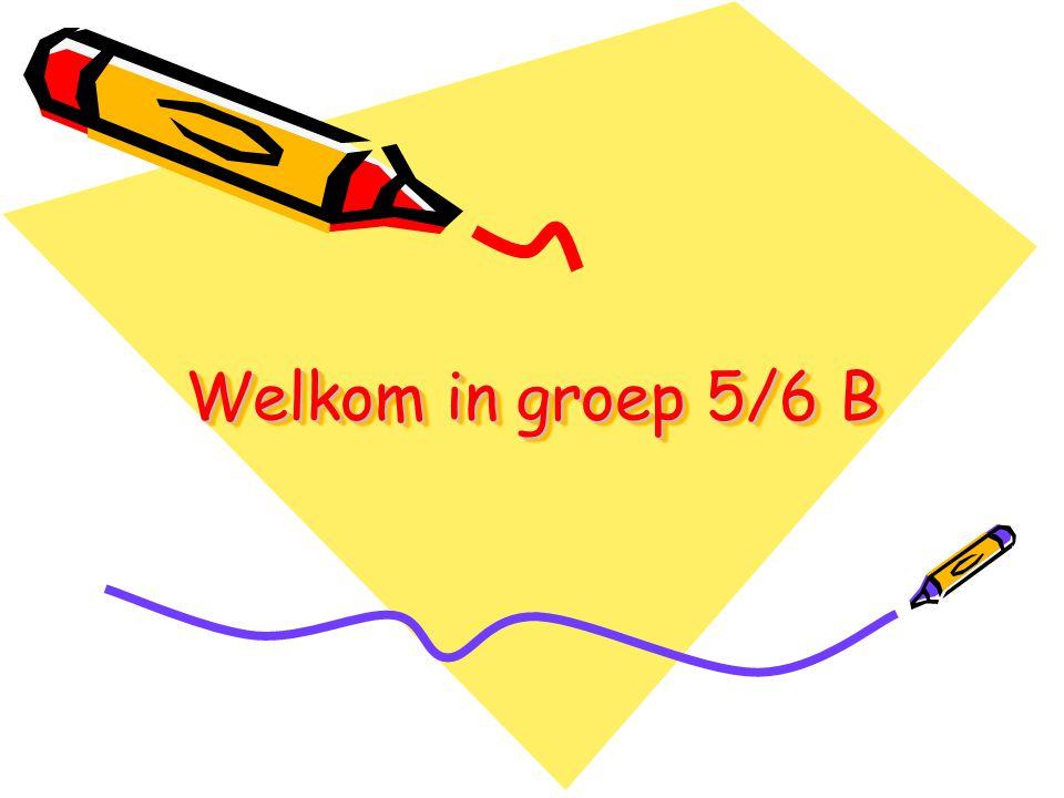 Welkom in groep 5/6 B
