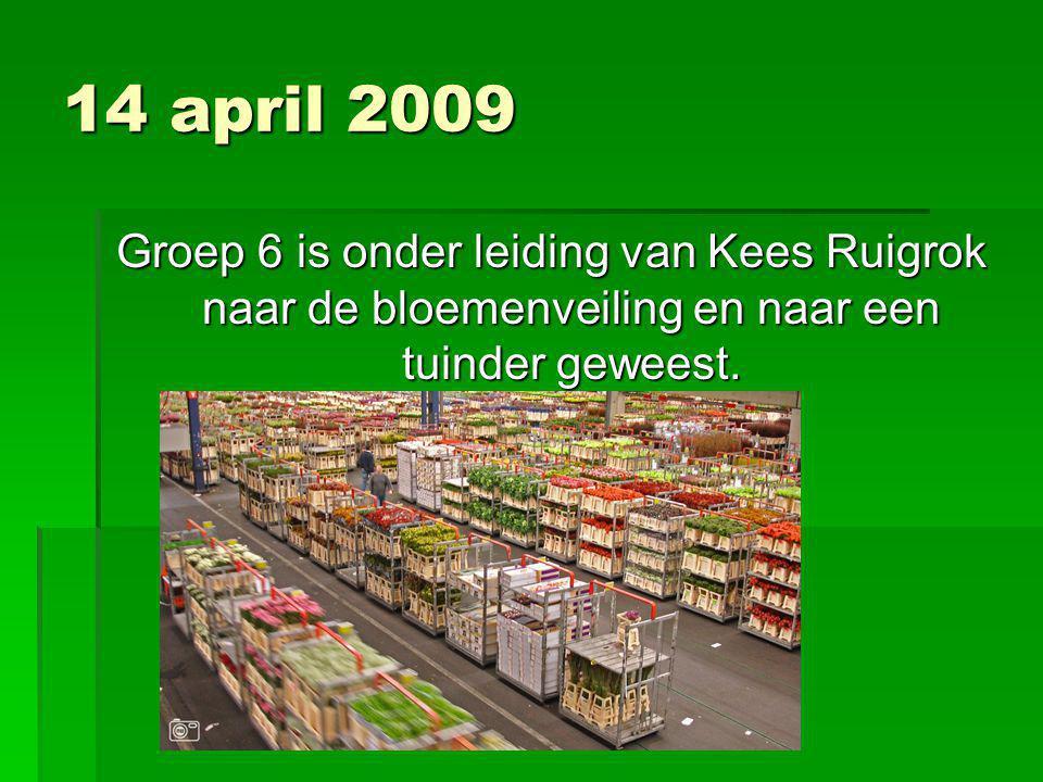 14 april 2009 Groep 6 is onder leiding van Kees Ruigrok naar de bloemenveiling en naar een tuinder geweest.