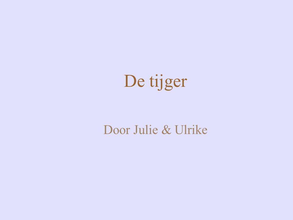 De tijger Door Julie & Ulrike