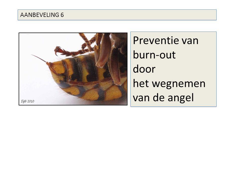 AANBEVELING 6 Preventie van burn-out door het wegnemen van de angel