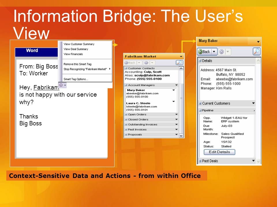 Information Bridge: The User's View