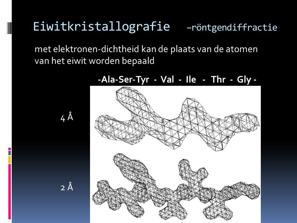 Eiwitkristallografie –röntgendiffractie