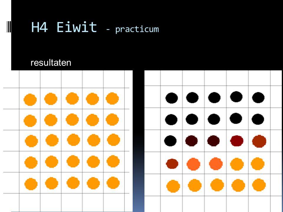 H4 Eiwit - practicum resultaten