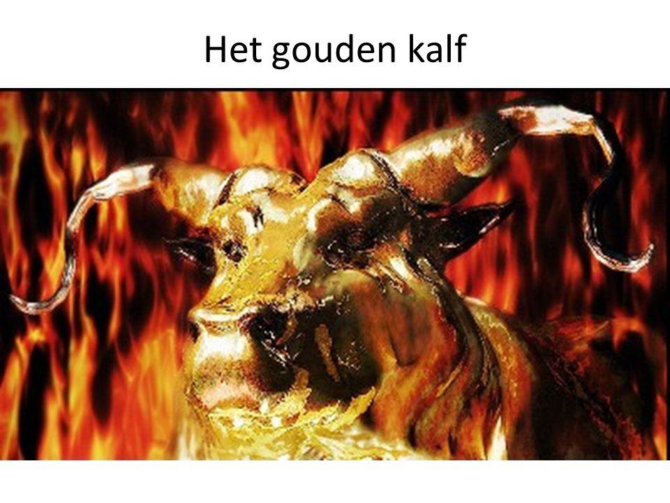 Het gouden kalf 4