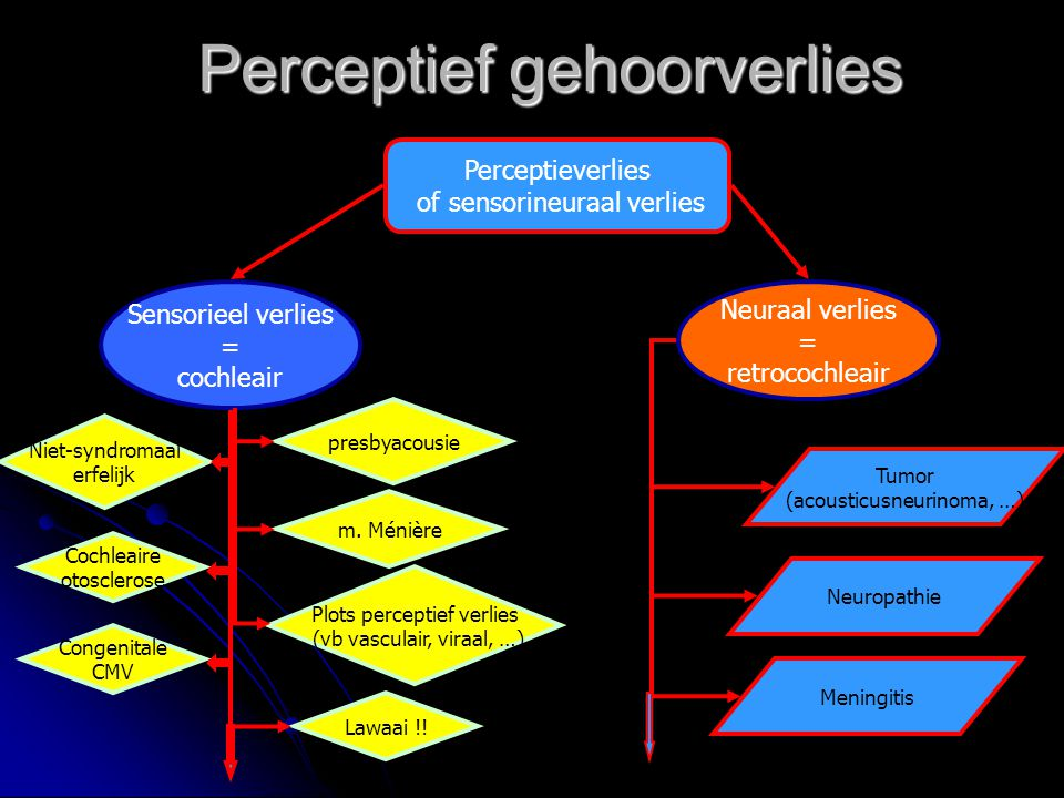 Perceptief gehoorverlies