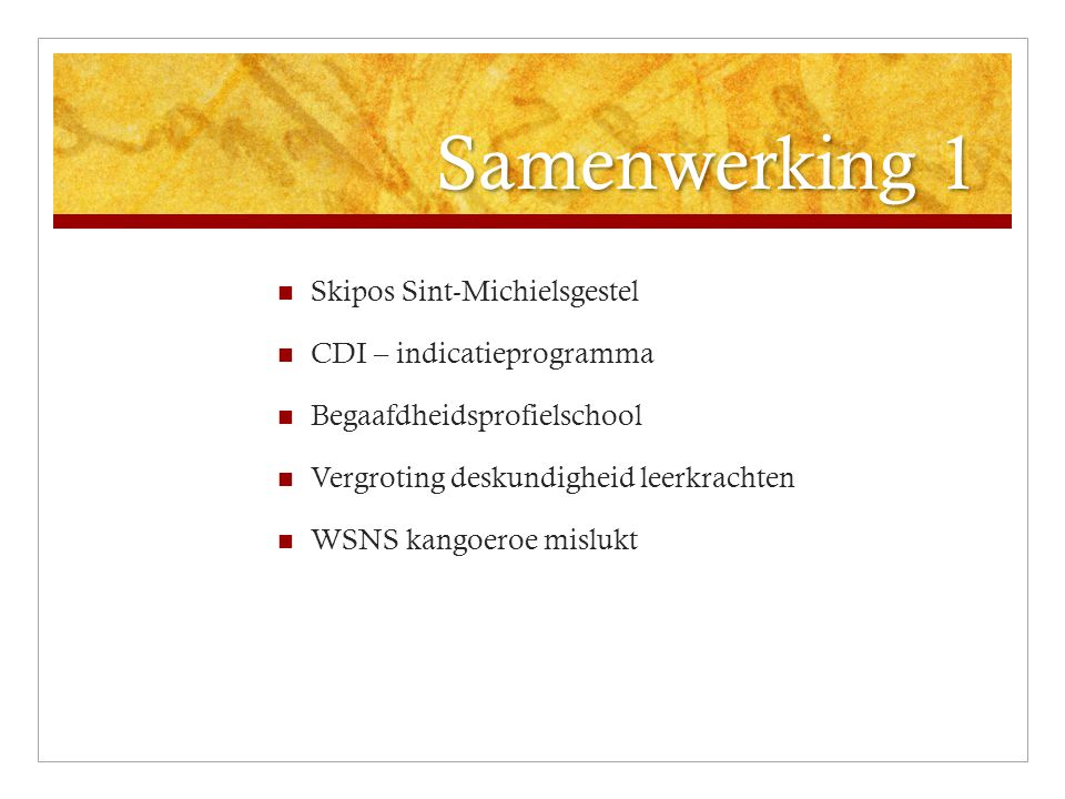 Samenwerking 1 Skipos Sint-Michielsgestel CDI – indicatieprogramma