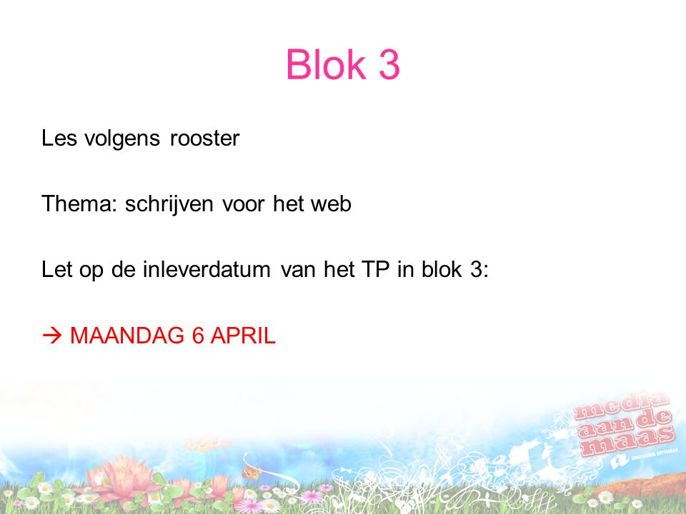 Blok 3 Les volgens rooster Thema: schrijven voor het web
