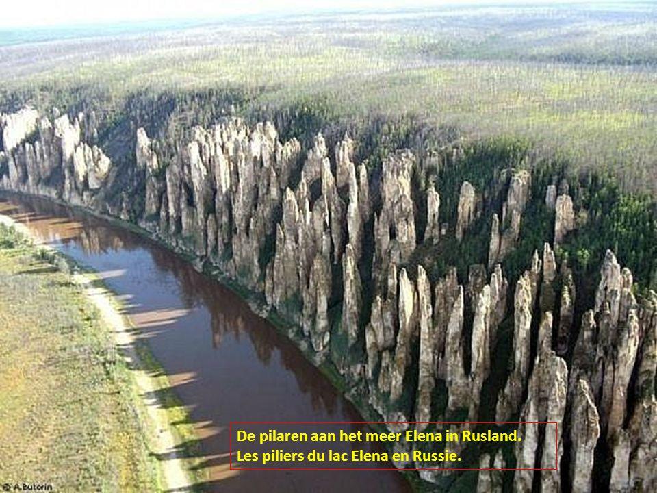 De pilaren aan het meer Elena in Rusland.