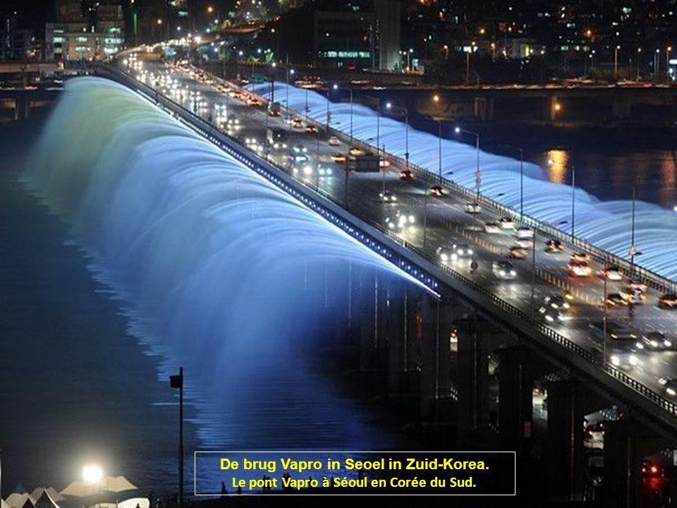 De brug Vapro in Seoel in Zuid-Korea.