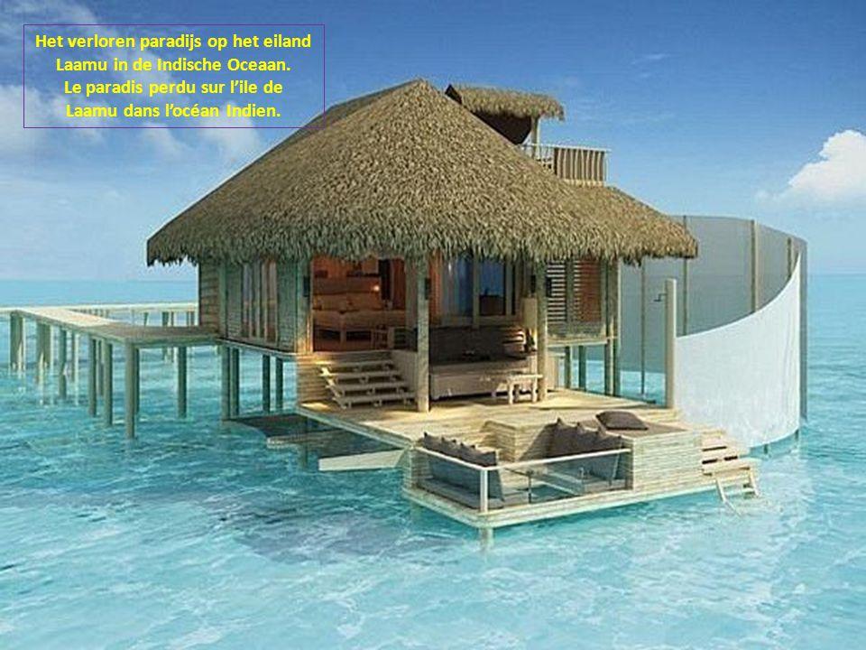 Het verloren paradijs op het eiland Laamu in de Indische Oceaan.