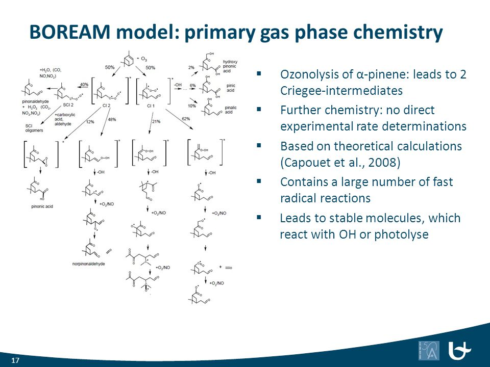 BOREAM model: primary gas phase chemistry