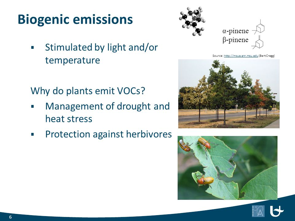 Biogenic emissions Stimulated by light and/or temperature
