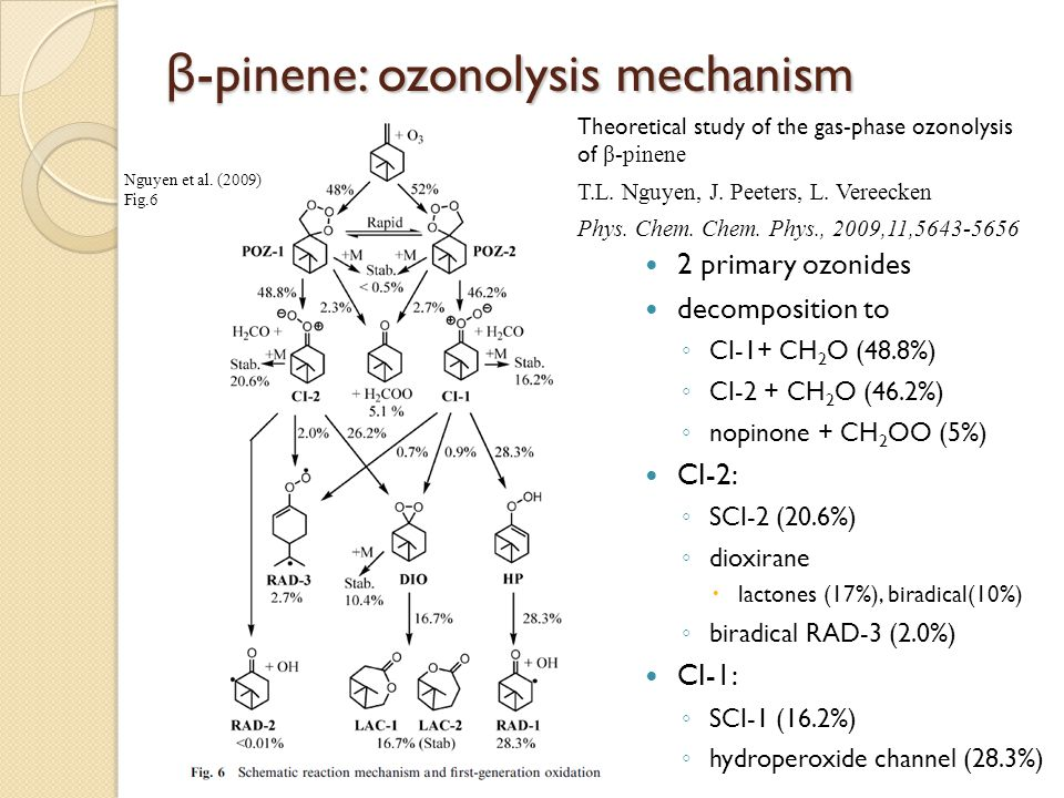 β-pinene: ozonolysis mechanism