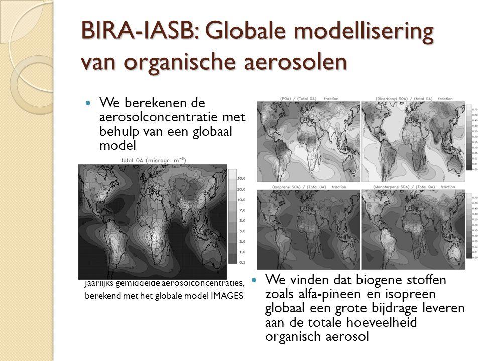 BIRA-IASB: Globale modellisering van organische aerosolen
