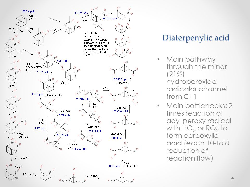 Diaterpenylic acid Main pathway through the minor (21%) hydroperoxide radicalar channel from CI-1.