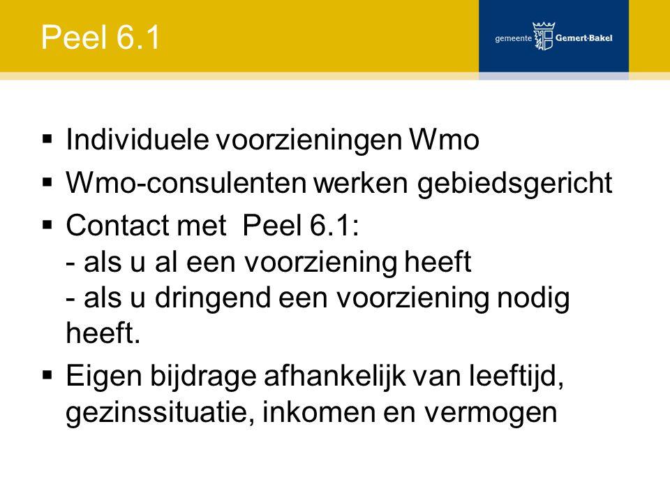 Peel 6.1 Individuele voorzieningen Wmo