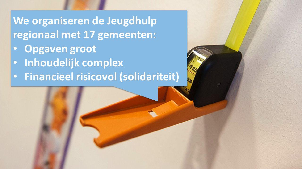We organiseren de Jeugdhulp regionaal met 17 gemeenten:
