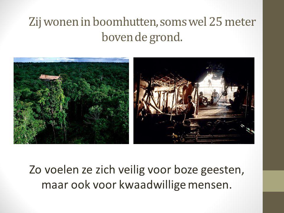 Zij wonen in boomhutten, soms wel 25 meter boven de grond.