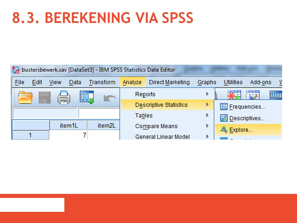 8.3. Berekening via SPSS