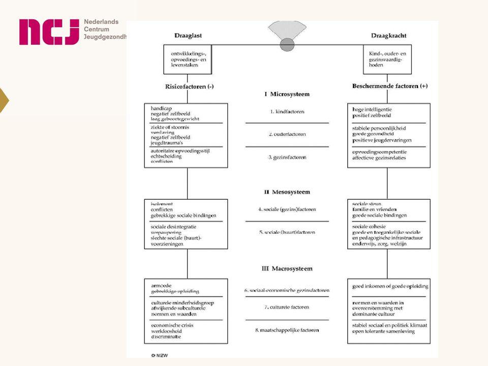Model van Bakker als ecologisch analysemodel van de oorzaken van opvoedproblematiek