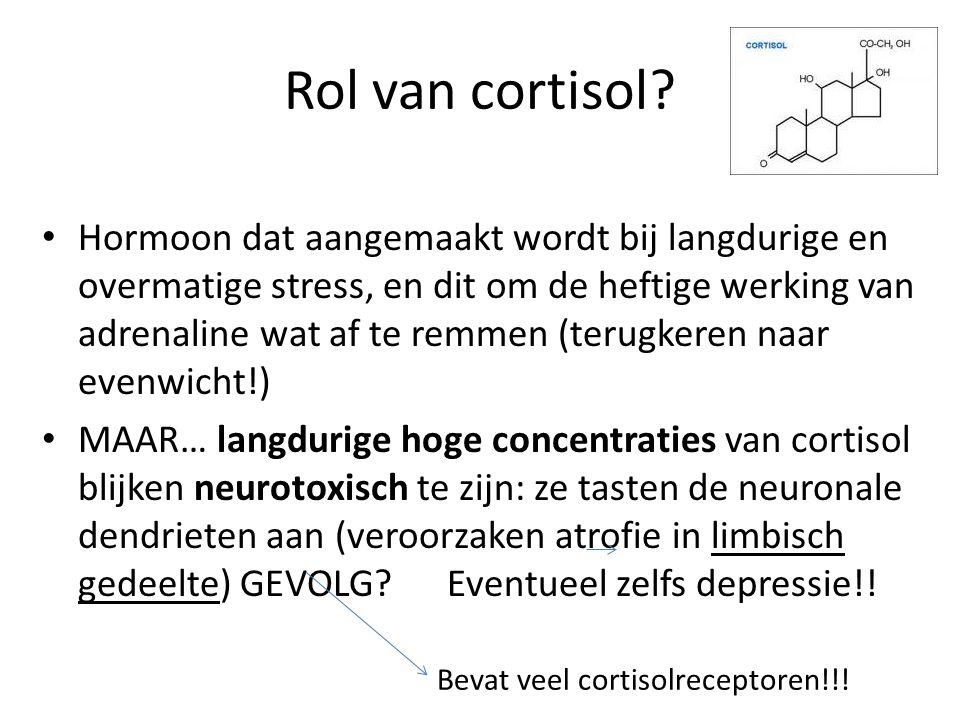 Rol van cortisol