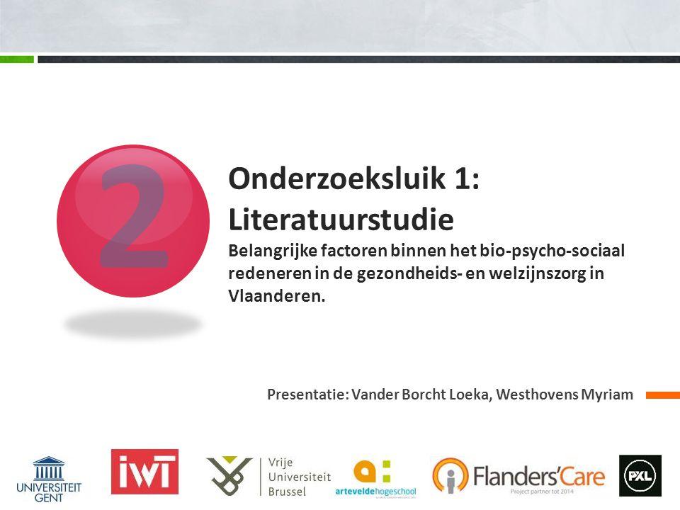 2 Onderzoeksluik 1: Literatuurstudie Belangrijke factoren binnen het bio-psycho-sociaal redeneren in de gezondheids- en welzijnszorg in Vlaanderen.