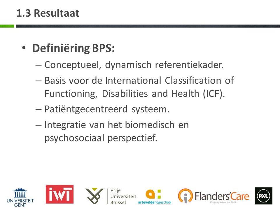 Definiëring BPS: 1.3 Resultaat Conceptueel, dynamisch referentiekader.