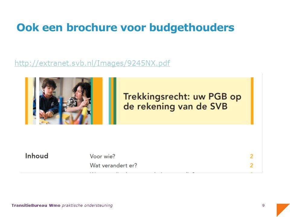 Ook een brochure voor budgethouders