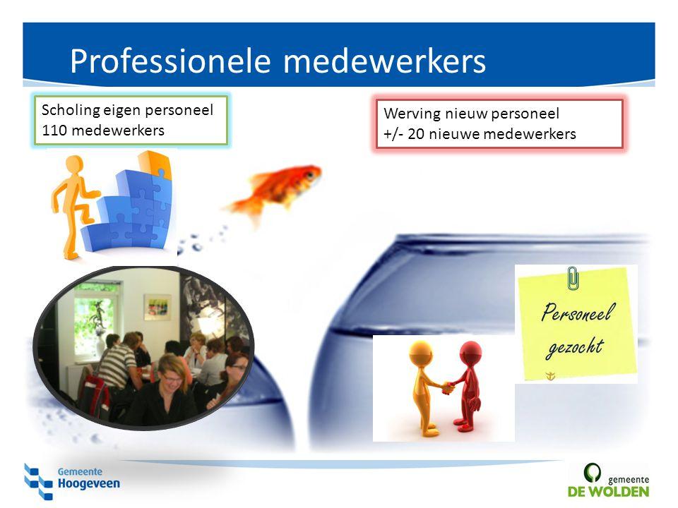 Professionele medewerkers