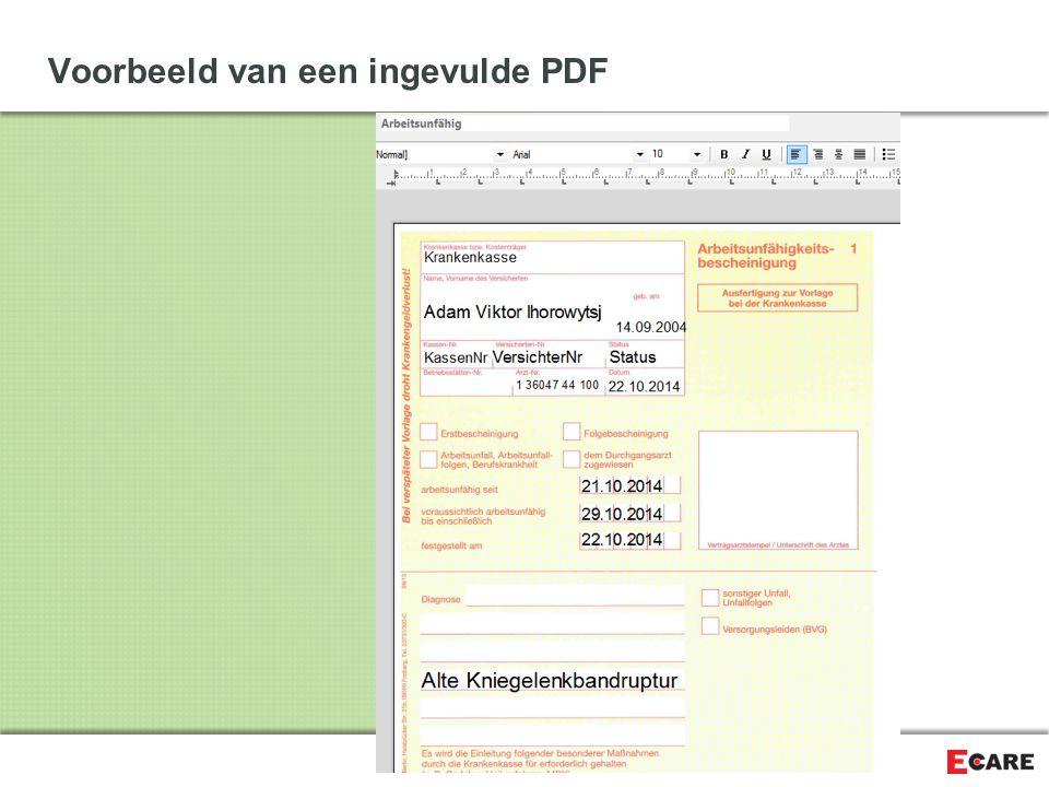 Voorbeeld van een ingevulde PDF