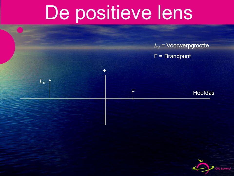De positieve lens 𝐿 𝑣 = Voorwerpgrootte F = Brandpunt + 𝐿 𝑣 F Hoofdas