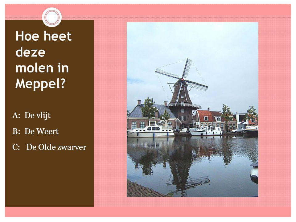 Hoe heet deze molen in Meppel