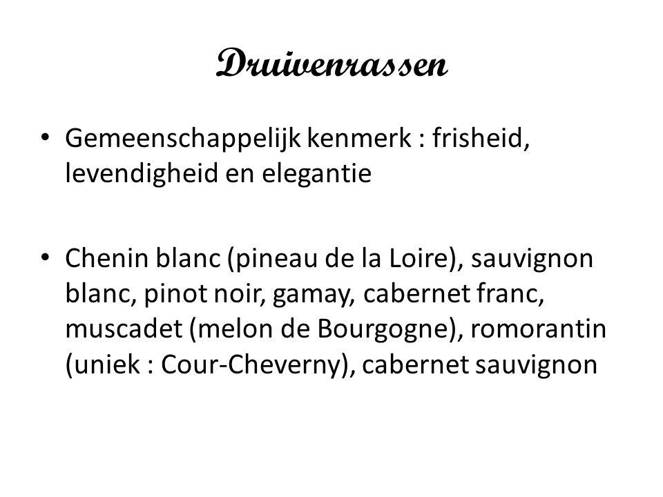 Druivenrassen Gemeenschappelijk kenmerk : frisheid, levendigheid en elegantie.