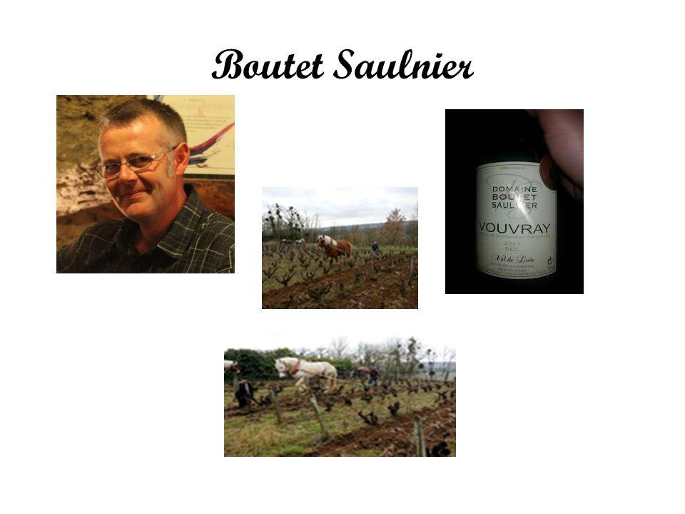 Boutet Saulnier