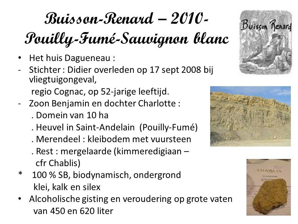 Buisson-Renard – 2010- Pouilly-Fumé-Sauvignon blanc
