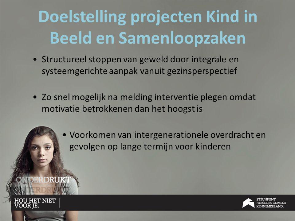 Doelstelling projecten Kind in Beeld en Samenloopzaken