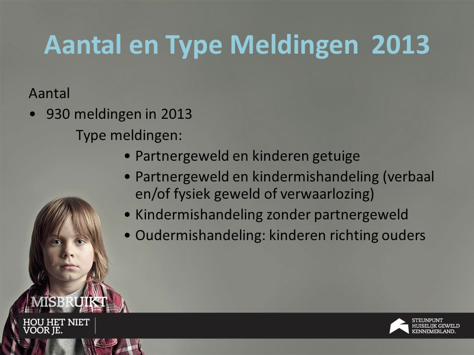 Aantal en Type Meldingen 2013