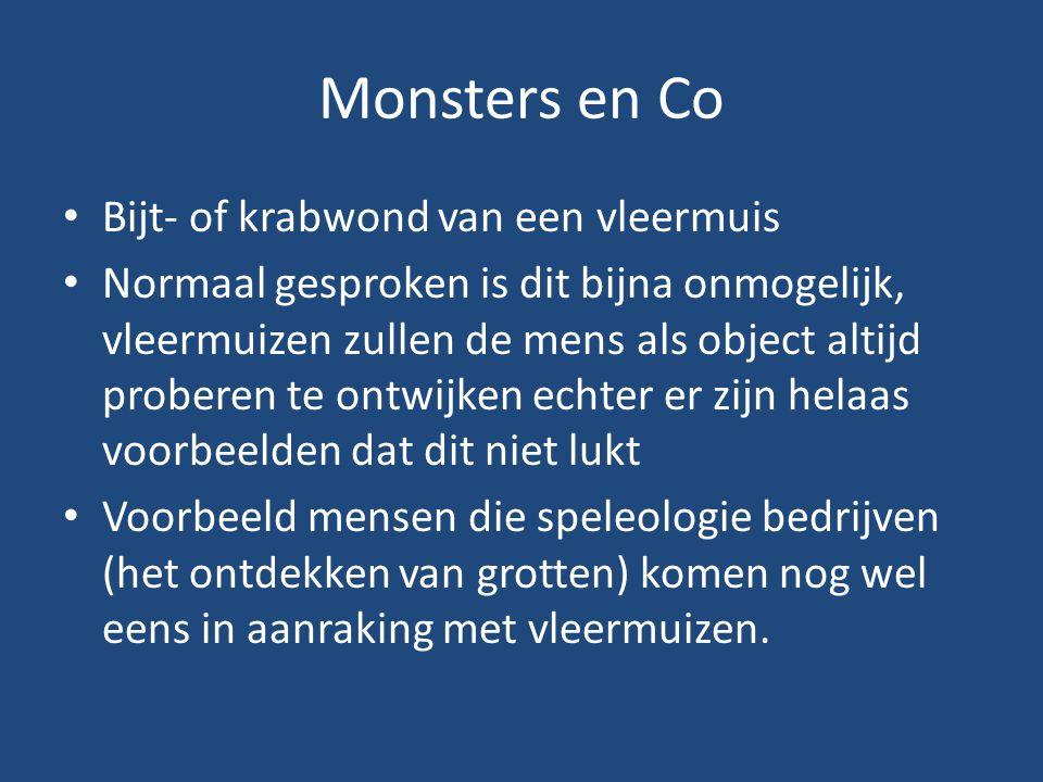 Monsters en Co Bijt- of krabwond van een vleermuis